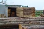 Sprzedam zakład drzewny