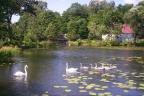 40 ha z prywatnym jeziorem