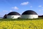 Szukam współinwestora do biogazowni
