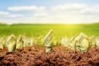 Usługi dla rolnictwa