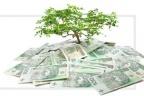 20% udziałów za kapitał obrotowy dla startup z dotacją 8.1