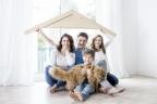 Szukam inwestora dla portalu ogłoszeń nieruchomości