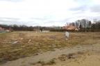 Grunt 11533 m2, projekty, pozwolenia - zabudowa bliźniacza - spółka docelowa