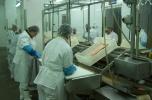 Dochodowy zakład przetwórstwa ryb na sprzedaż
