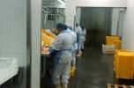 Firma - przetwórnia ryb na sprzedaż z kontraktami i umowami handlowymi