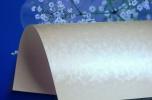 Firma sprzedająca papier dla poligrafii, importer, znana marka. Ocena klientów w skali do 5 to 4,98