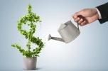Fundusz inwestycyjny - projekty powyżej 500 tys. złotych