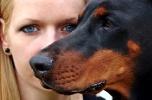 Gadżety dla miłośników psów i kotów