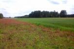 Grunty rolne o pow. 70180 m2 na sprzedaż z dużymi pokładami żwiru, piasku