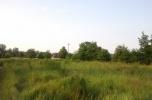 Oferuję działkę rolną z możliwością odrolnienia w rejonie szlaku komunikacyjnego  Moskwa - Berlin