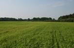 Poszukuję inwestora 58 ha w doskonałej lokalizacji (cena ustalana w drodze negocjacji)