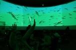 Poszukujemy inwestora do wdrożenia na rynek technologii ekranów 360°