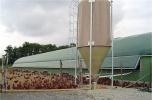 Produkcja jaj w chowie wolno wybiegowym lub ścióókowym
