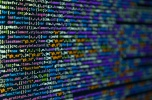 Software house poszukuje inwestora