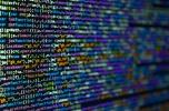 SoftwareHouse poszukuje inwestora