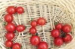 Sprzedam 2 sklepy internetowe ze świeżą ekologiczną żywnością