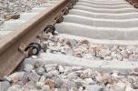 Sprzedam udziały - szukam inwestora - budownictwo kolejowe, energetyka