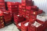 Sprzedam zorganizowane przedsiębiorstwo z branży spożywczej z siecią sklepów (zakład mięsny)