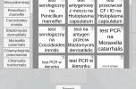 Trener mikrobiologii - aplikacja przeglądarkowa do nauki leczenia chorób zakaźnych