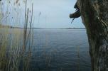 Wyspa Wolin teren przy wodzie, osiedle, marina, pływające domy, dom weselny,  stacja ład. poj. elekt